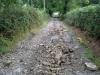 estate-road-powys