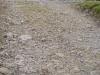grinton-estate-swaledale-before3