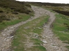 grinton-estate-swaledale-before5